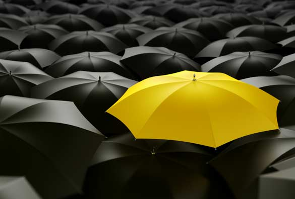 yellow color isolated