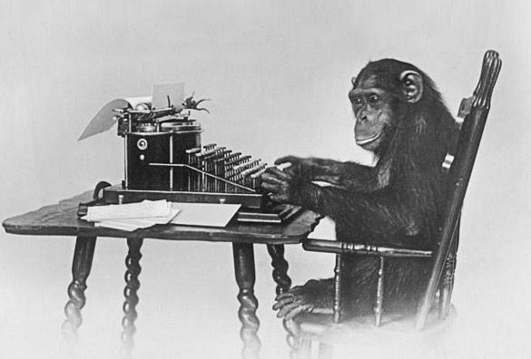 graphic design monkey