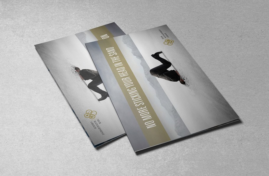 Brochure Design For Business Management Co.